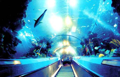 广州海洋馆